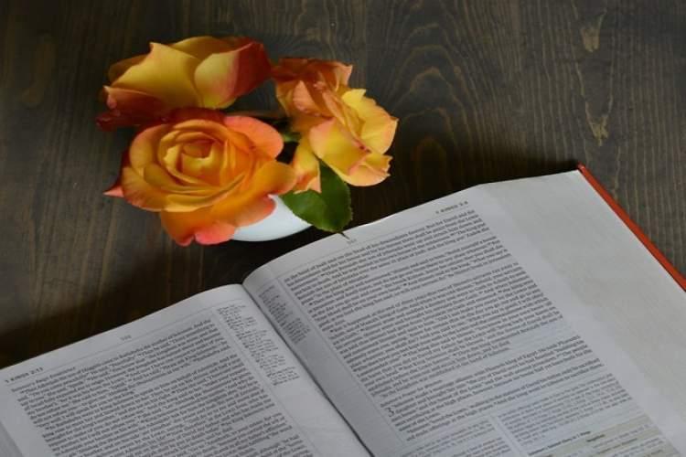 لیست 5 کتاب دلخراش که باعث می شوند هر بار با خواندن آن ها گریه کنید