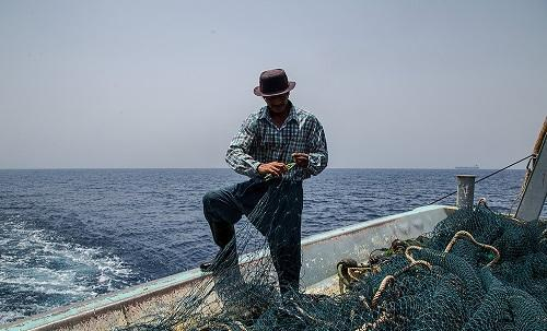صید ترال این بار در دریای مکران لنگر انداخت