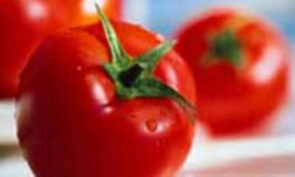 غذاهای ضد سرطان و غذاهای سرطانزا(2)